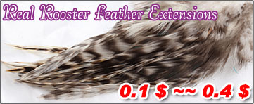 Real Rooster Feather
